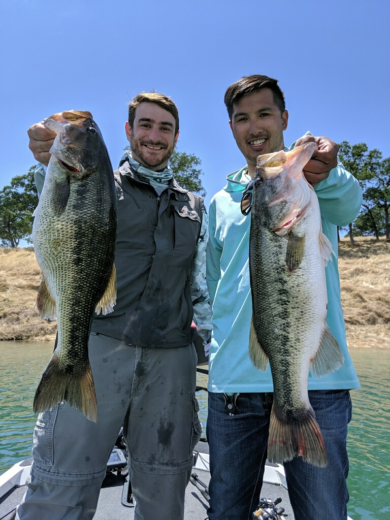 Current fishing report on New Melones Lake  Bass fishing is